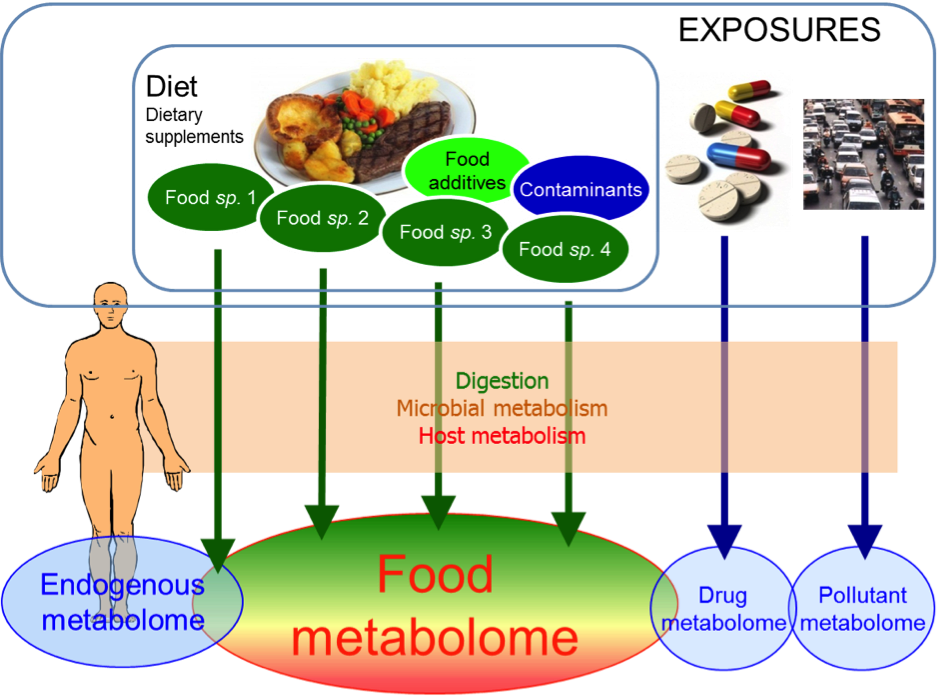 Metabolome